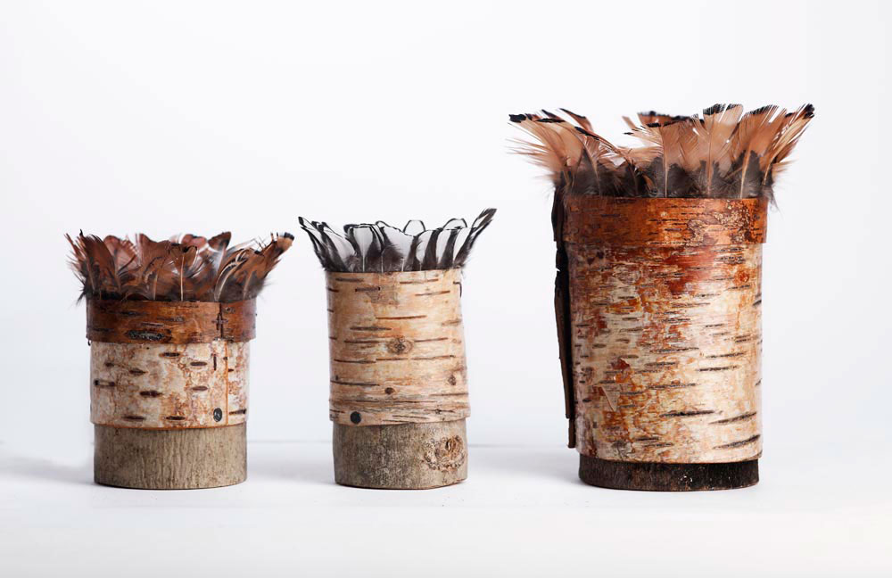Bark-vessels-group