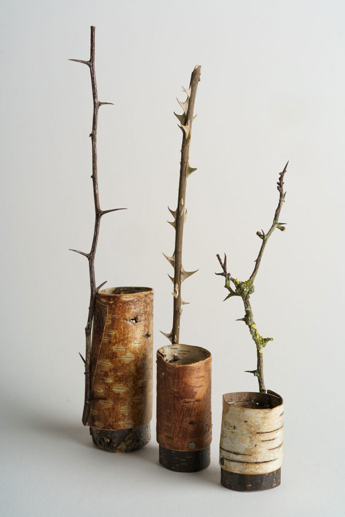 Bark-vessels-with-thorn-handles