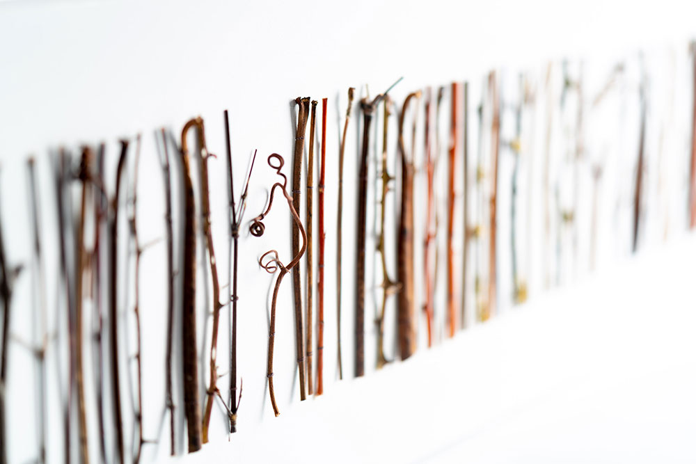 Collage-of-twig-detail-3