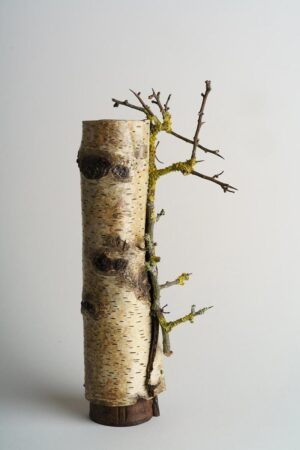 Silver birch bark vessel wrapped around eucalyptus vessel with lichen & thorn twig ht 26 x w 7 x dpth 7 cms £ 85.00