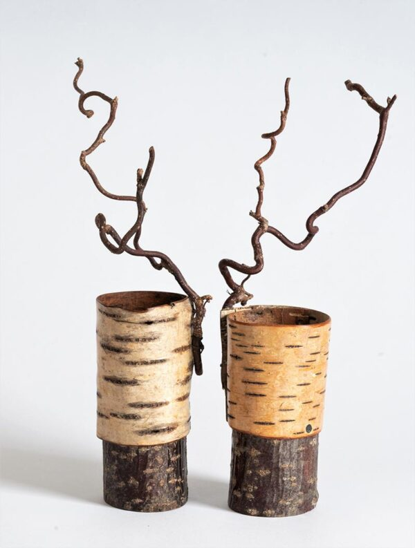 Silver birch bark vessels with twisted hazel ht 26 x w 6 cms £ 42.00 each